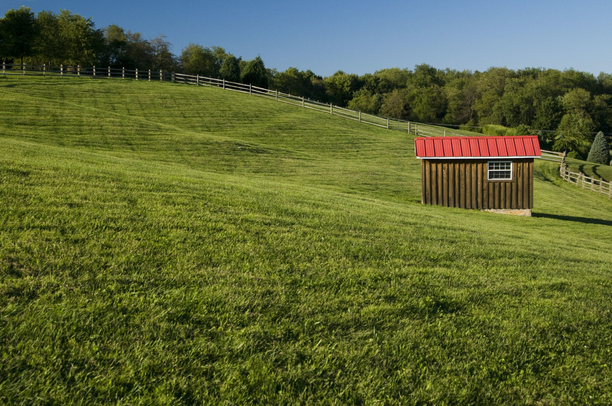 Open field with shed at Silvermist